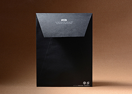 纸质服装手提袋印刷C0010